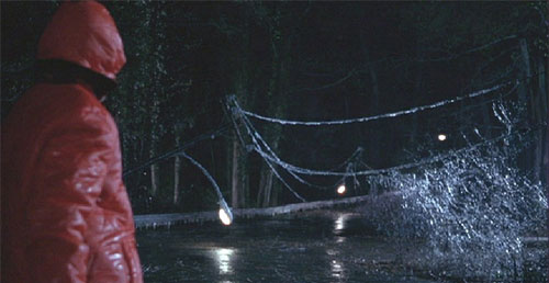 ice storm of 1998 essay The floodgates opened this morning on ice storm anniversary stories every major local media outlet has something, and many have a lot part of that is because there isn't much news on the 5th of january part is because they've had 10 years (with constant electricity) to prepare and part is because it had.
