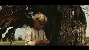 Desna-boy&tree