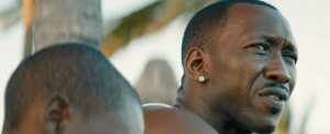 mahershala-ali-moonlight-700x286
