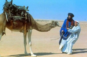 ishtar-camel