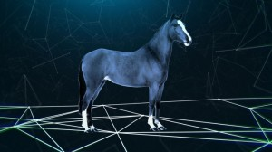 Big_History_About_Horse-E