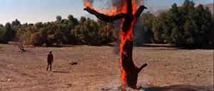 RideLonesome_burningtree