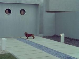 MonOncle-dog&garage