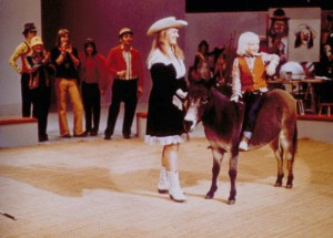 parade-mule