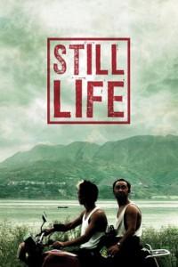 still-life-0-230-0-345-crop