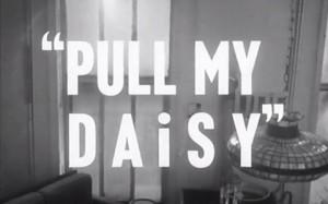 pull-my-daisy-480x300