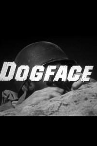 374980-dogface-0-230-0-345-crop